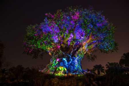 The-Tree-of-Life_Full_27543