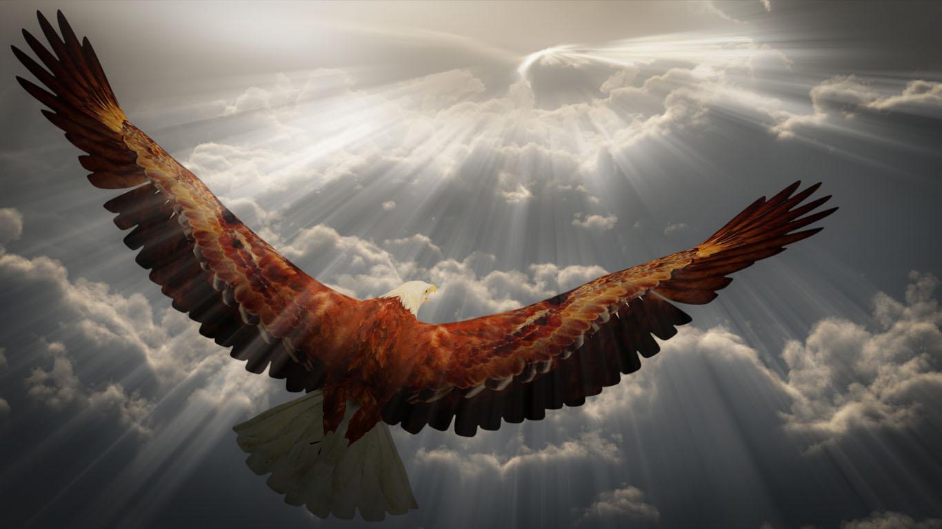 https://endigar.files.wordpress.com/2017/04/fly-like-an-eagle.jpg